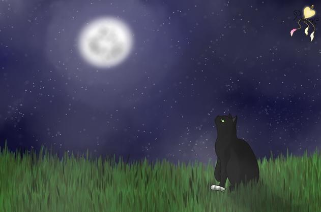 La sombre nuit ne connaîtra jamais le jour ensoleillé • Nuage Sombre (refaite avec la fiche de présentation définitive) Nuage_13