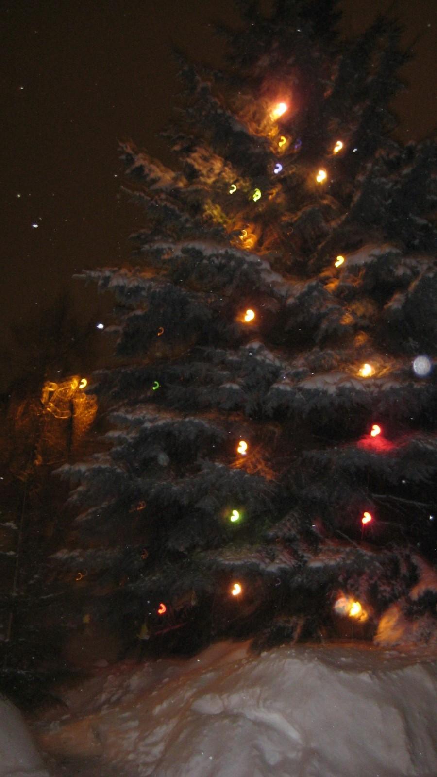 С Рождеством!  30tnq510