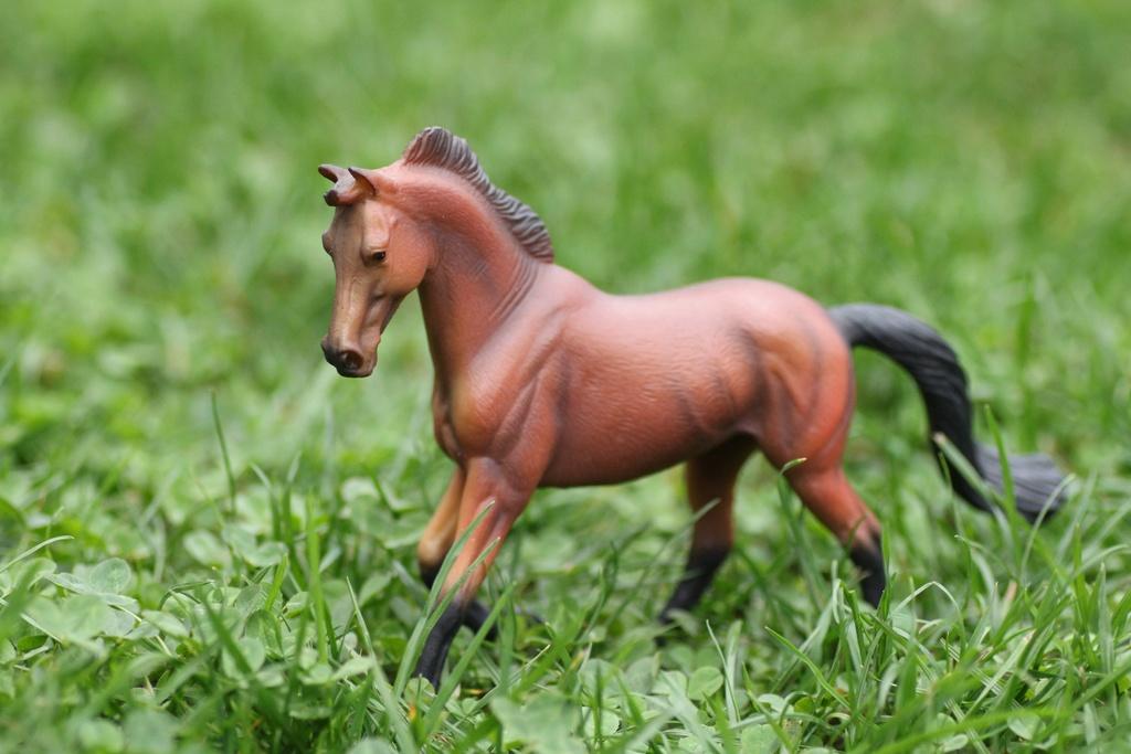 my Deborah McDermott's horses Collec12