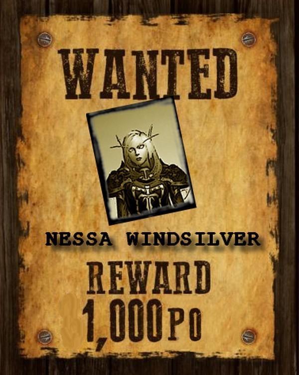 Affiche Nessa12