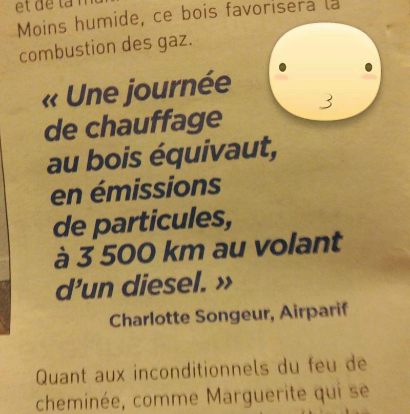 Interdiction des voitures d'avant 1997 et fermeture des voies sur berge dans Paris  - Page 12 Pollut11