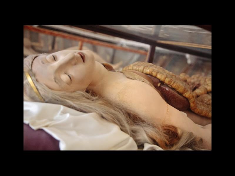 Le bref et mystique règne du cadavre de cire J1013