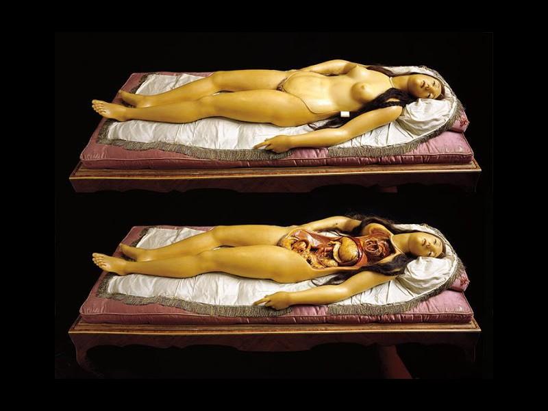 Le bref et mystique règne du cadavre de cire J1019