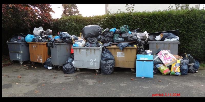 FORUM EXPRESSION Côtes-d'Armor. Le département champion dans la gestion des déchets ! Sans_t19