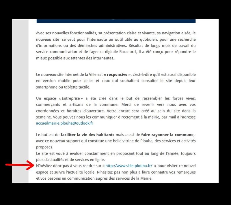 LE DOSSIER DE LA PAGE WEB DE LA MAIRIE  Sans_t71