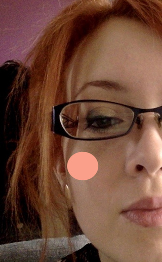 Maquillage du jour - Page 2 Blush10