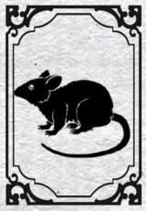 [Galerie] Kingdo s'ennuie Rat10