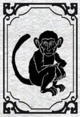 [Galerie] Kingdo s'ennuie Singe10