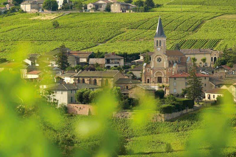 La fête des crus du Beaujolais Beaujo10