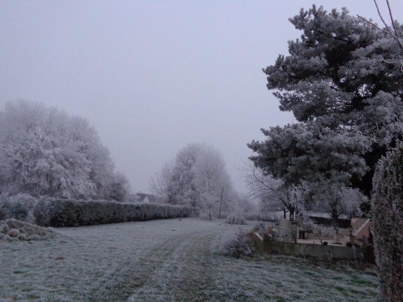Y 2017 NORMANDIE Brouillard givrant Dsc00419