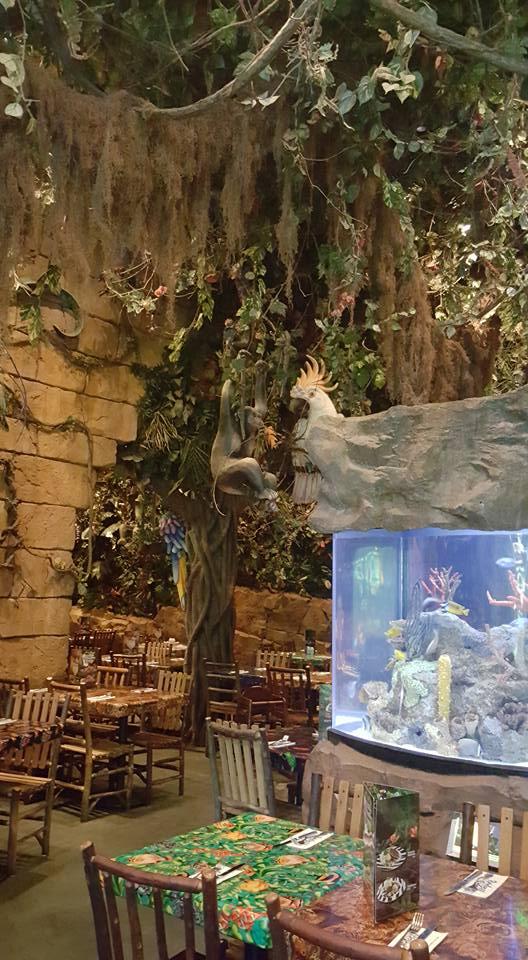 [Service à table] Rainforest Cafe - Page 27 2011