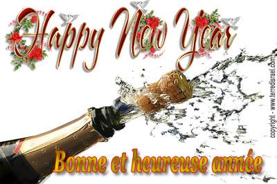 Bonne et heureuse année 2017 ! Bonne-10