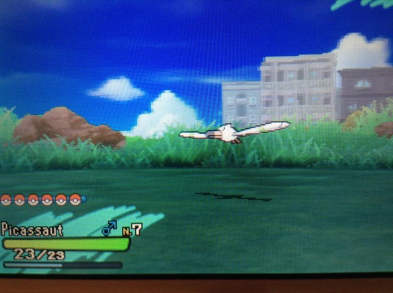 [JEUX VIDEO] Pokémon : Attrapez-les Tous!! (Nintendo) - Page 7 Img_2413