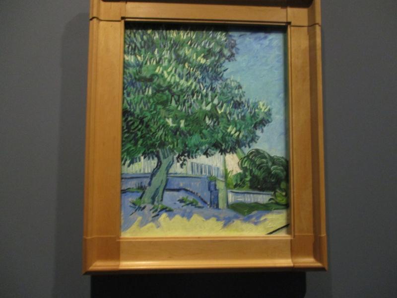 Vincent Willem van Gogh,   (peintre) Img_2830