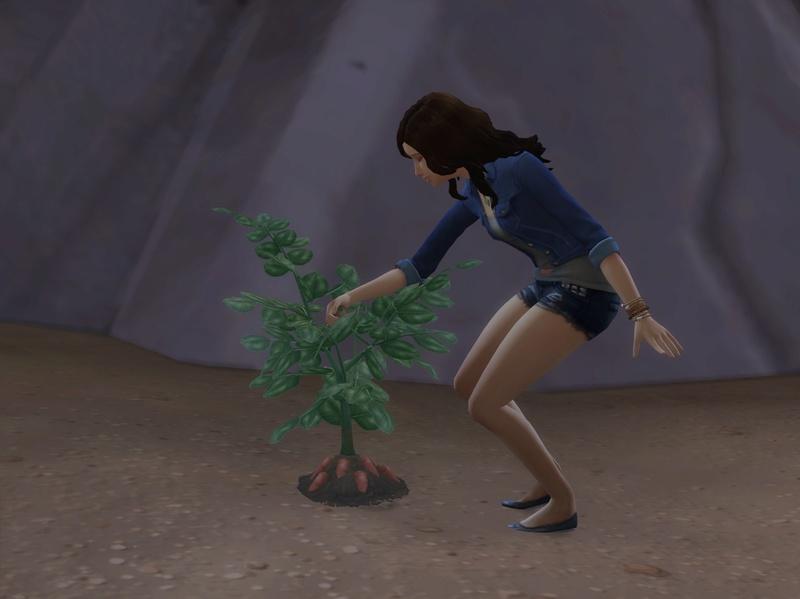 [Abandon] Miss-Gabrielle Découvre et redécouvre les Sims 4 - Page 2 1112