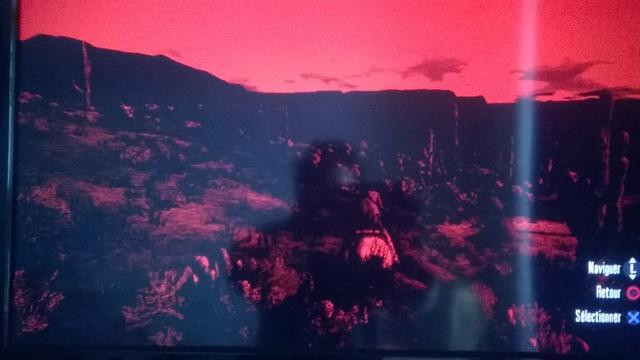 [problème] RED DEAD REDEMPTION PS3 Red_de10