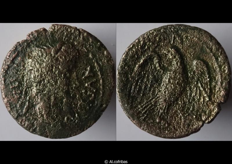 Monnaies d'Auguste Aigle10