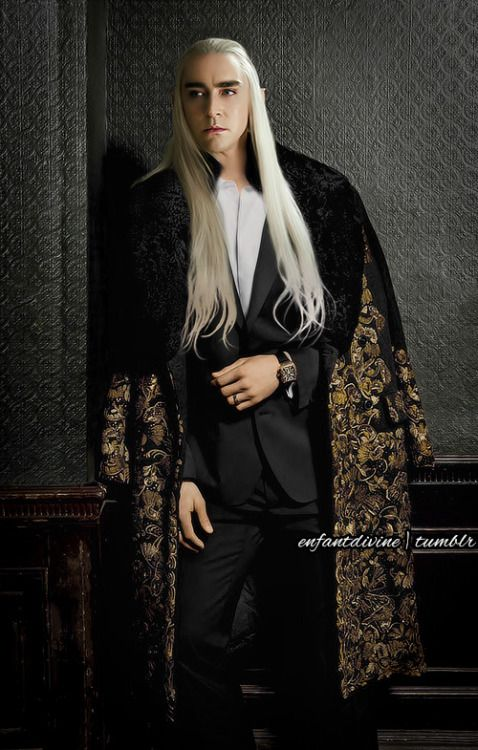 The Modern Thranduil attire 26460611