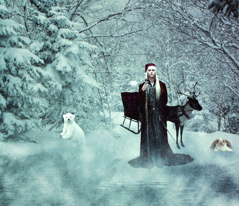 Winterly Mirkwood Elven_10
