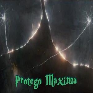 7. Zaubern für Muggels Proteg19