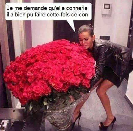 humour - Page 3 14591610