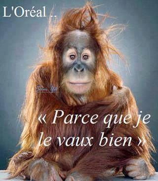 humour - Page 3 14907610