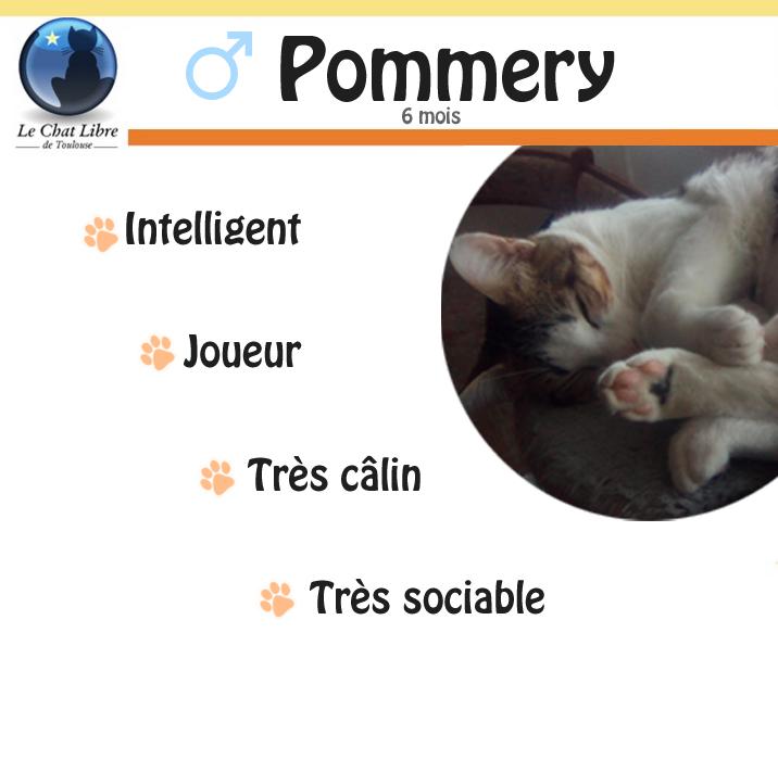 Fiche de renseignement Pommer11