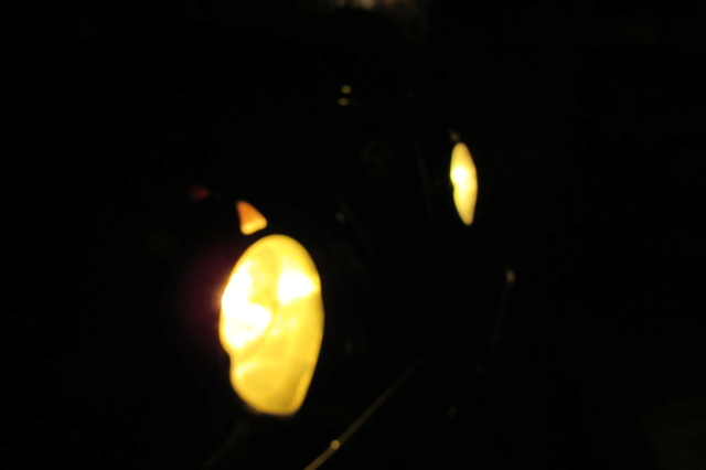Phares jaunes Img_3610