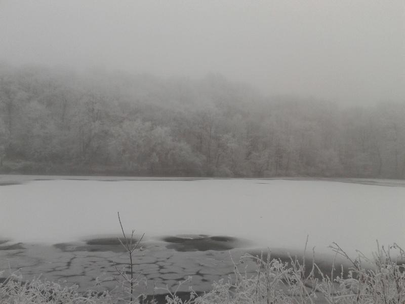 L'hiver à Meudon-la-Forêt 20161216