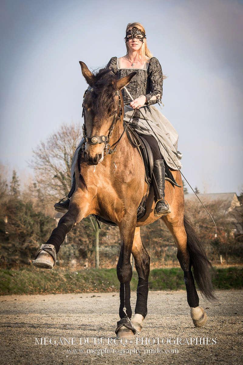 travail de chevaux Img_4010
