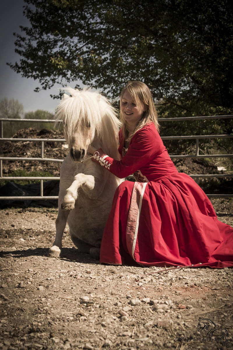 travail de chevaux Img_9110