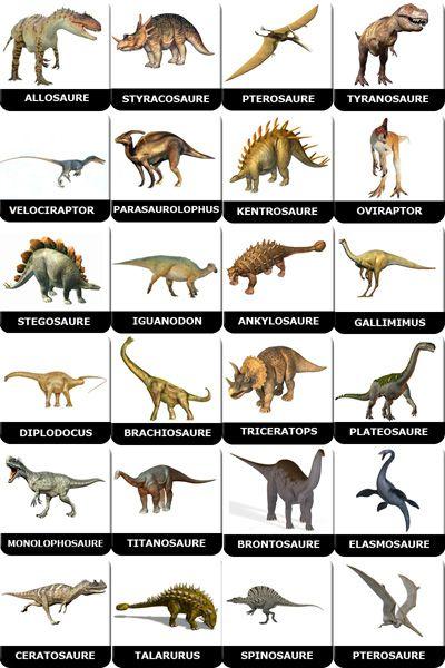 C'est lequel ton dinosaure préféré ?  - Page 2 C8f41510