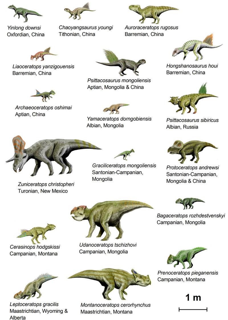 C'est lequel ton dinosaure préféré ?  - Page 2 Dinosa10