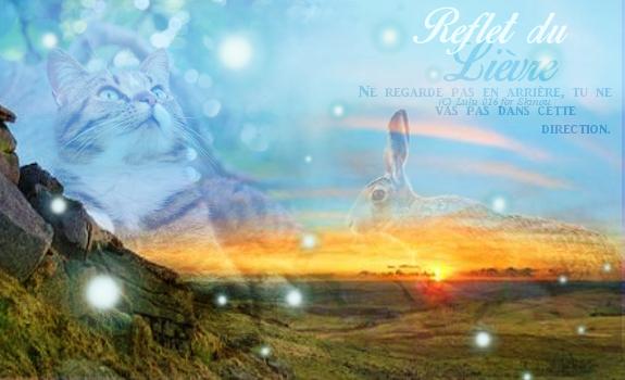 Présentation de Arwen ~ Reflet12