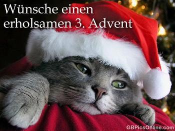 Wir wünschen Euch Allen einen schönen 1 - 4. Advent bzw. Nikolaus - Seite 3 0113_a10