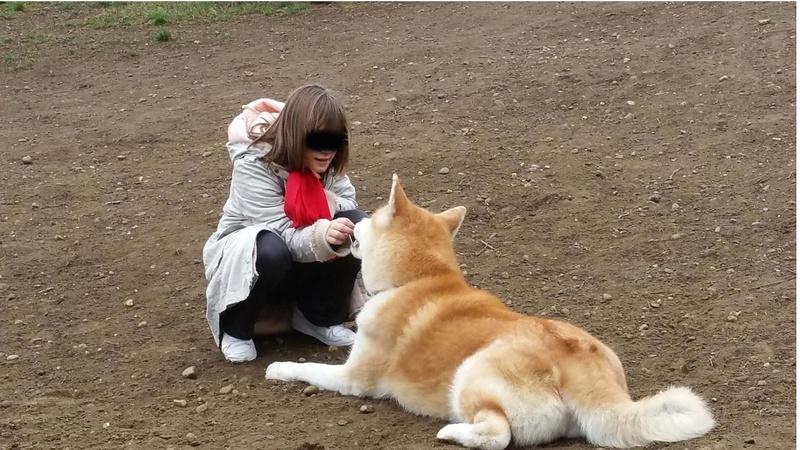 Des enfants et des chiens... - Page 2 13247810