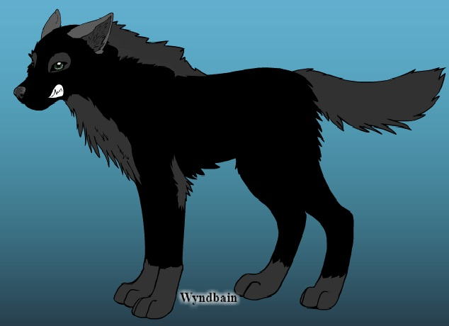 Create Your Wolf Here Talav210