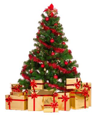 Joyeux Noel 2016  Sapin_11