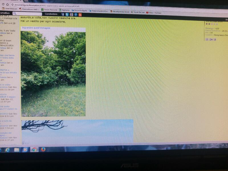 Dimensioni foto nella colonna del forum Rps20144