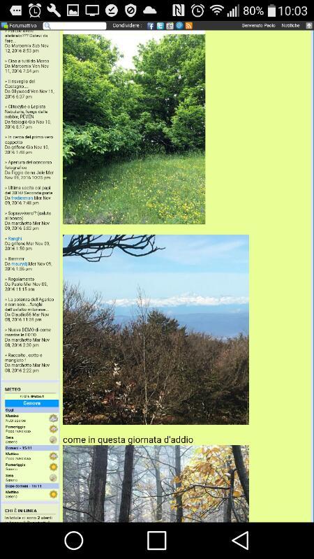 Dimensioni foto nella colonna del forum Rps20145
