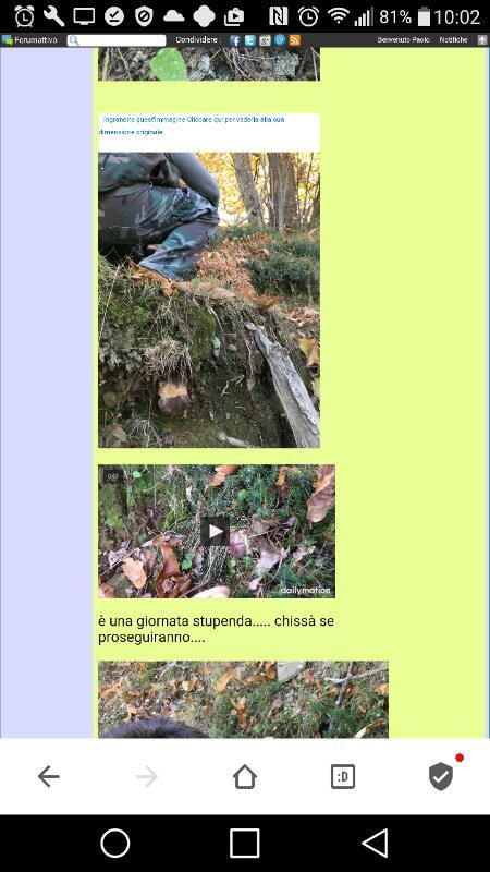 Dimensioni foto nella colonna del forum Rps20146