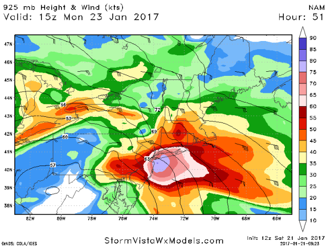 January 22nd-24th Nor'easter Observations & Discussions  58836f10