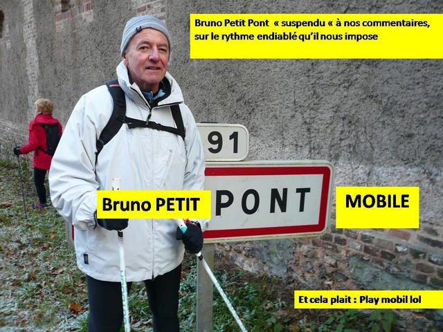 Que la campagne est belle, ..pas de primaire prévue ! Bruno_10