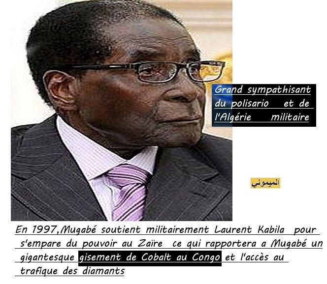 Zimbabwé desavoué a Marrakech رئيس زمبابوي صاحب منجم الكوبالط يفقد بركته في مراكش 5a10
