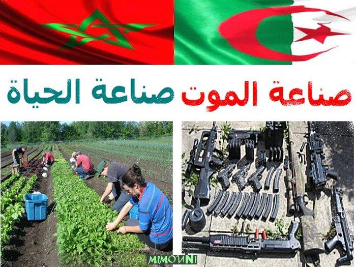 algerie - Maroc vs Algerie industrie vitale vs industrie mortelle  صناعة الحياة صناعة الموت Aaa110