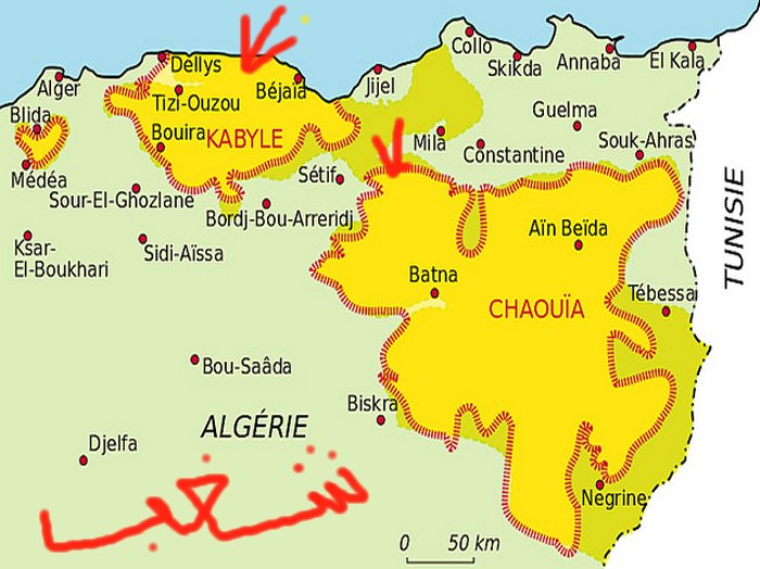 Algerie en emeute فوضي عارمة  تجتاح عدة مناطق من الجزائر Mimoun14