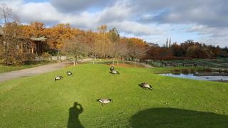 Parc floral vincennes 20161273