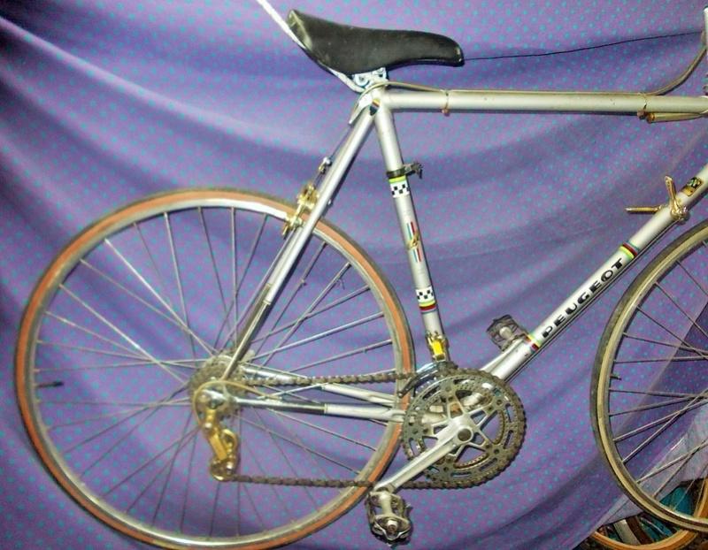 peugeot PY 10  GOLD - autour de 1975 / 1976 Dscn9918