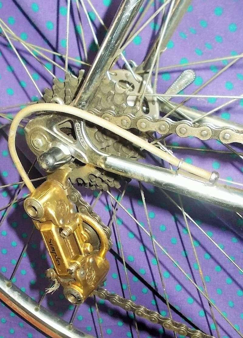 peugeot PY 10  GOLD - autour de 1975 / 1976 Dscn9921