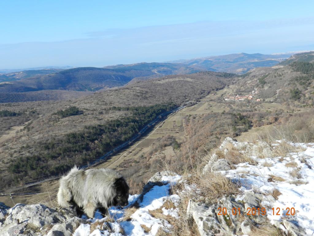 20 gennaio 2019, con il 3 Kraji sul monte Golic 20_gen15